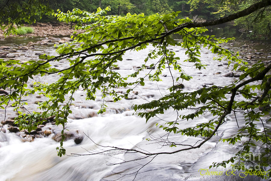 Rushing River Photograph