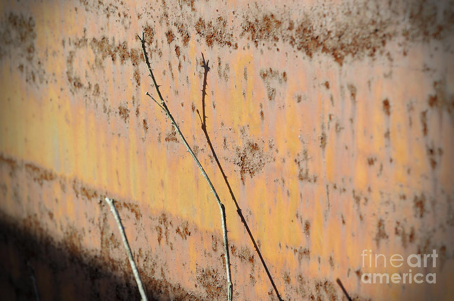 Rust Photograph - Rustic Landscape by Luke Moore