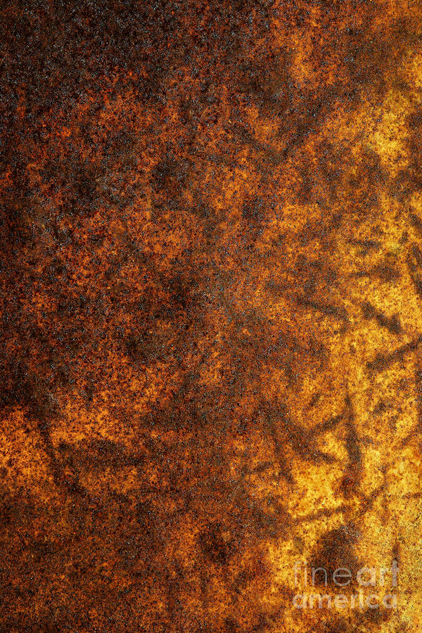 Rusty Background Photograph  - Rusty Background Fine Art Print