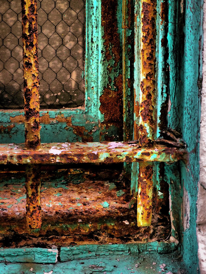 Rusty Cage Photograph