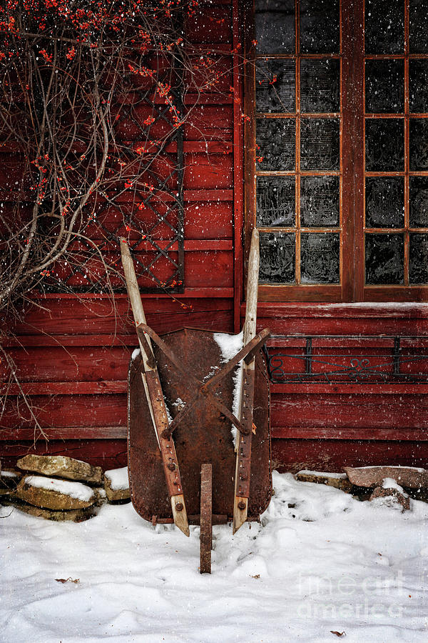 Rusty Wheelbarrow Leaning Against Barn In Winter Photograph
