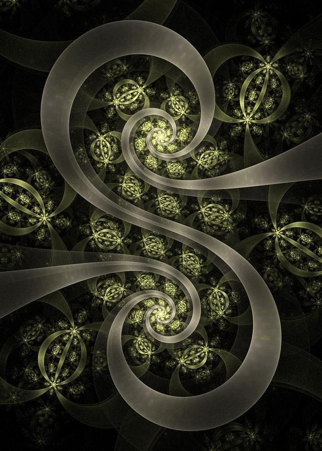 S Curve Digital Art