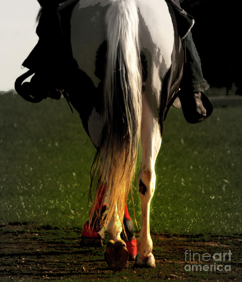 Saddling Home  Photograph  - Saddling Home  Fine Art Print