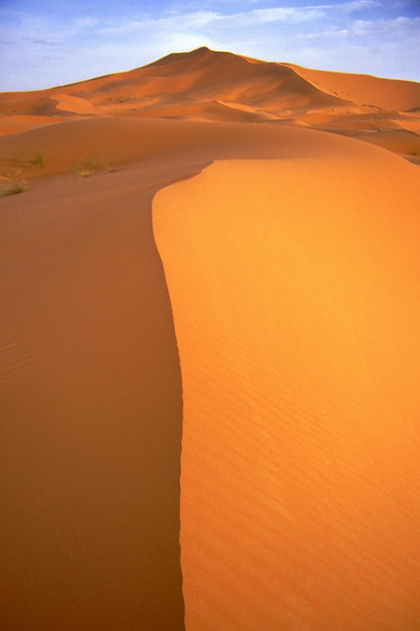 Sahara Dawn Photograph