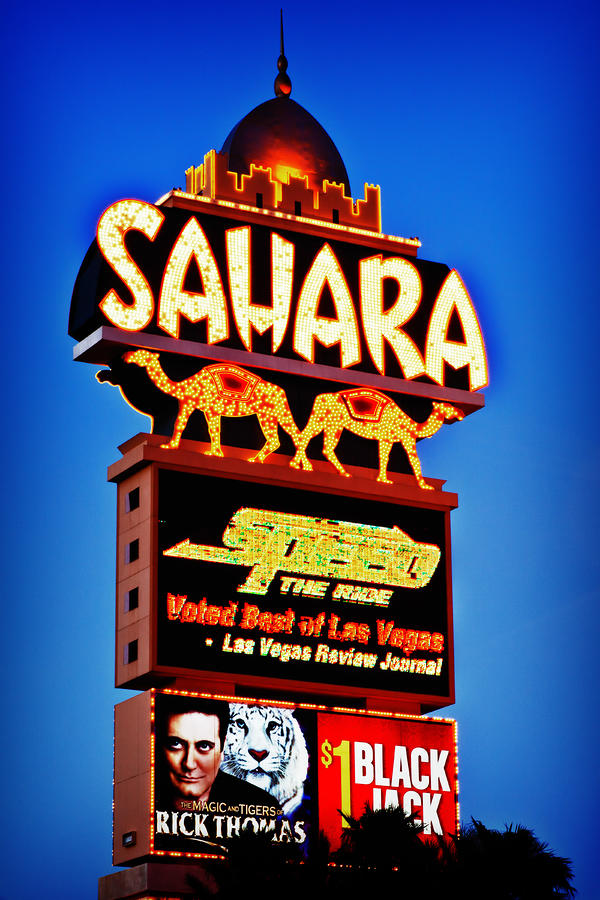 Sahara Sign Photograph