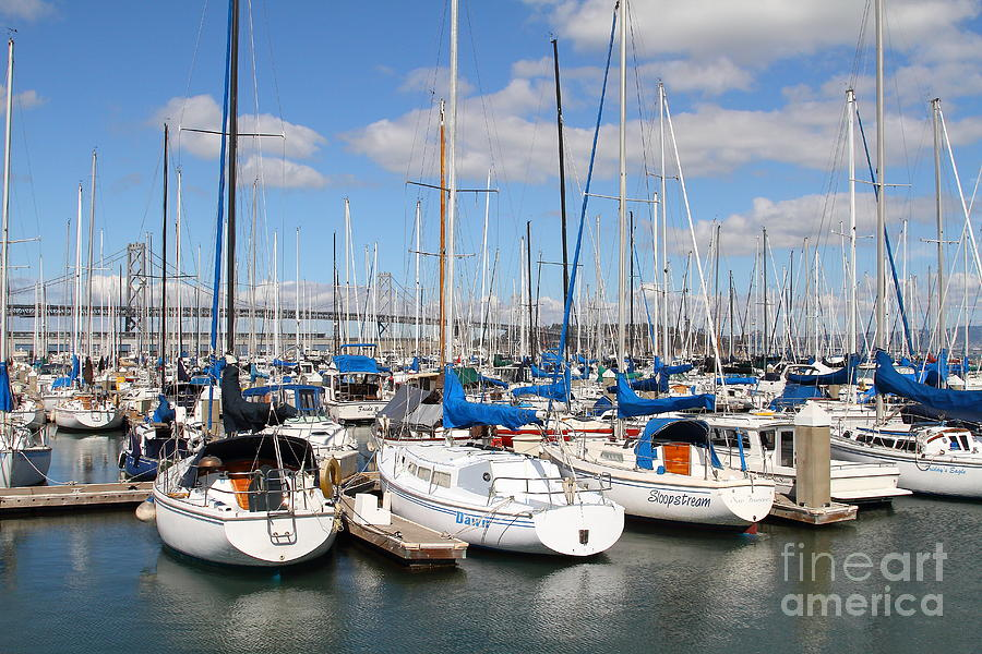 Sail Boats At San Francisco China Basin Pier 42 With The Bay Bridge In The Background . 7d7688 Photograph  - Sail Boats At San Francisco China Basin Pier 42 With The Bay Bridge In The Background . 7d7688 Fine Art Print