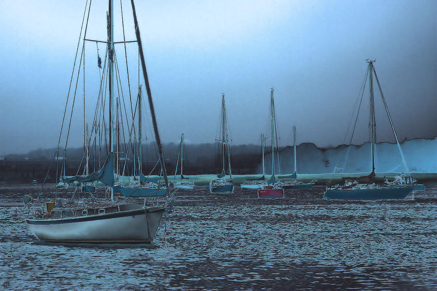 Sailboat Harbor Photograph