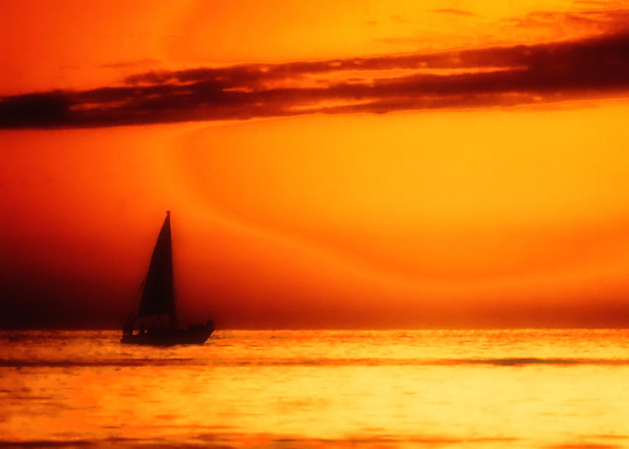 Sailboat In Orange Photograph  - Sailboat In Orange Fine Art Print