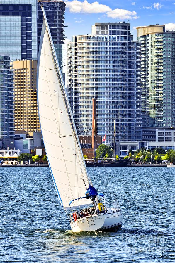 Sailboat In Toronto Harbor Photograph