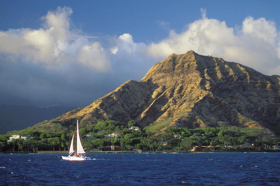 Sailboat Of Diamond Head Photograph  - Sailboat Of Diamond Head Fine Art Print