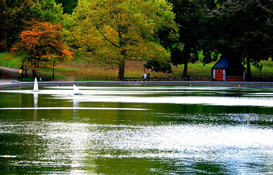 Sailboat Pond At Central Park Photograph  - Sailboat Pond At Central Park Fine Art Print