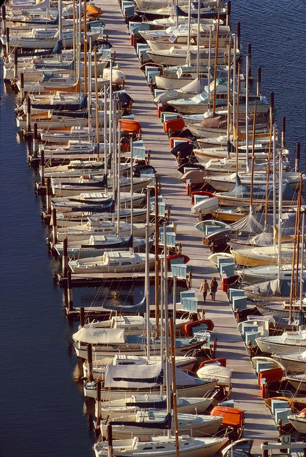 Sailboats At Moorage Photograph