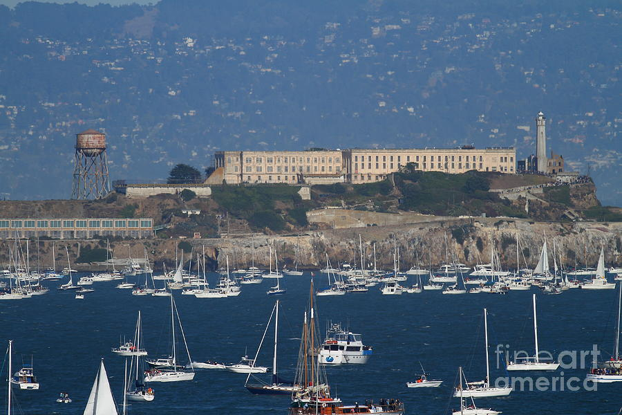 Sailboats In The San Francisco Bay Overlooking Alcatraz . 7d8080 Photograph