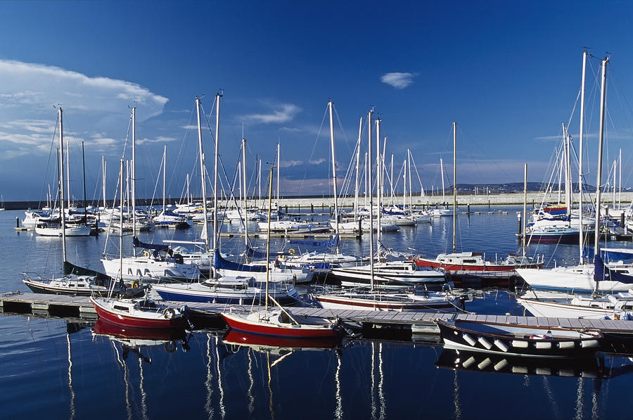 Sailboats Moored In Harbor Marina Photograph By Axiom