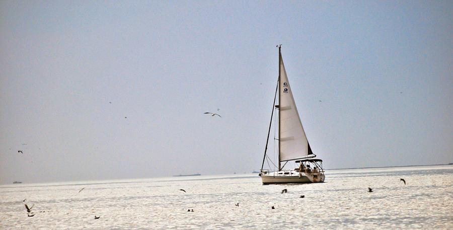 Sailing Pyrography