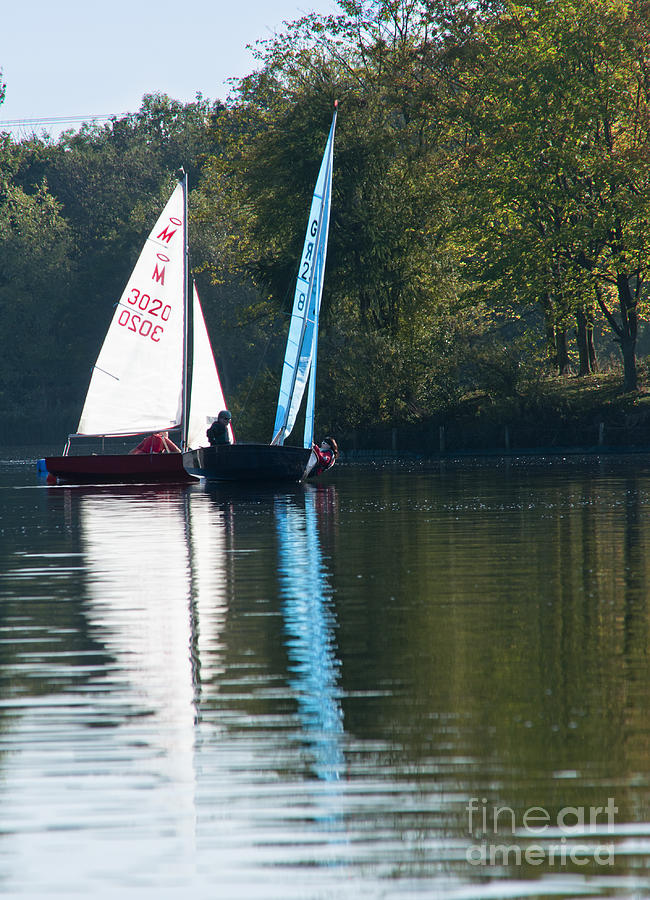 Sailing Boats Photograph  - Sailing Boats Fine Art Print