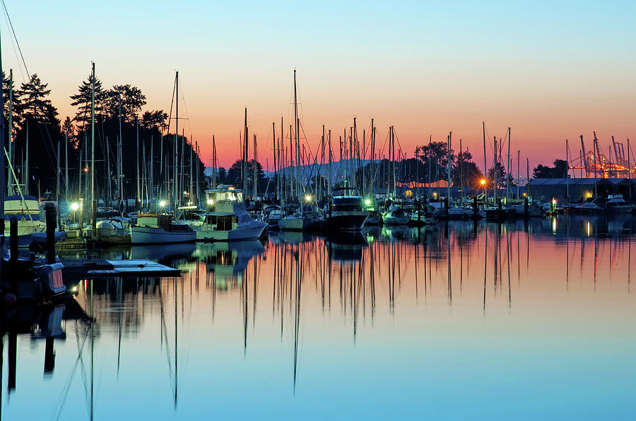 Sailing Boats In Coal Harbour Photograph