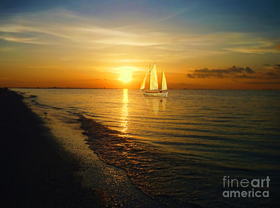 Sailing Photograph - Sailing by Jeff Breiman