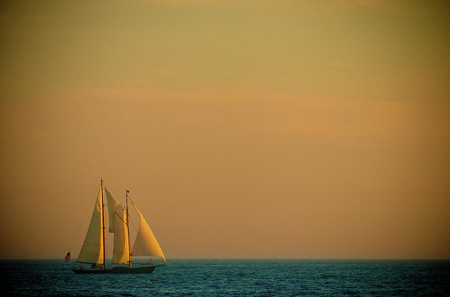 Sails Photograph  - Sails Fine Art Print