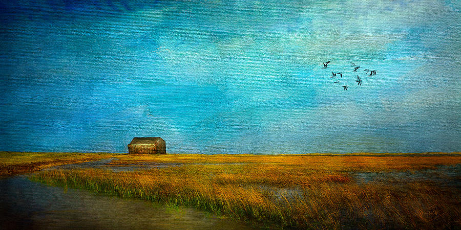 Salt Marsh Mixed Media  - Salt Marsh Fine Art Print