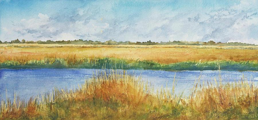 Salt Marsh by Nancy Barry