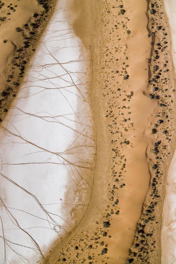 Salt Pans Deep In The Kalahari With 4x4 Photograph