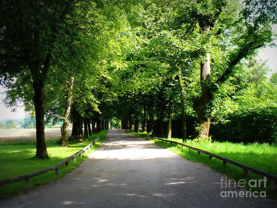 Salzburg Lane Photograph