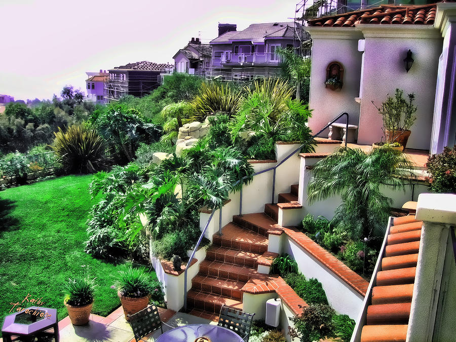 San Clemente Estate Backyard Photograph  - San Clemente Estate Backyard Fine Art Print