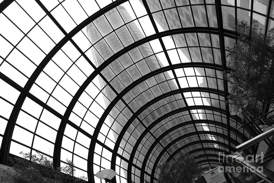 San Francisco Crocker Galleria - 5d17869 - Black And White Photograph  - San Francisco Crocker Galleria - 5d17869 - Black And White Fine Art Print