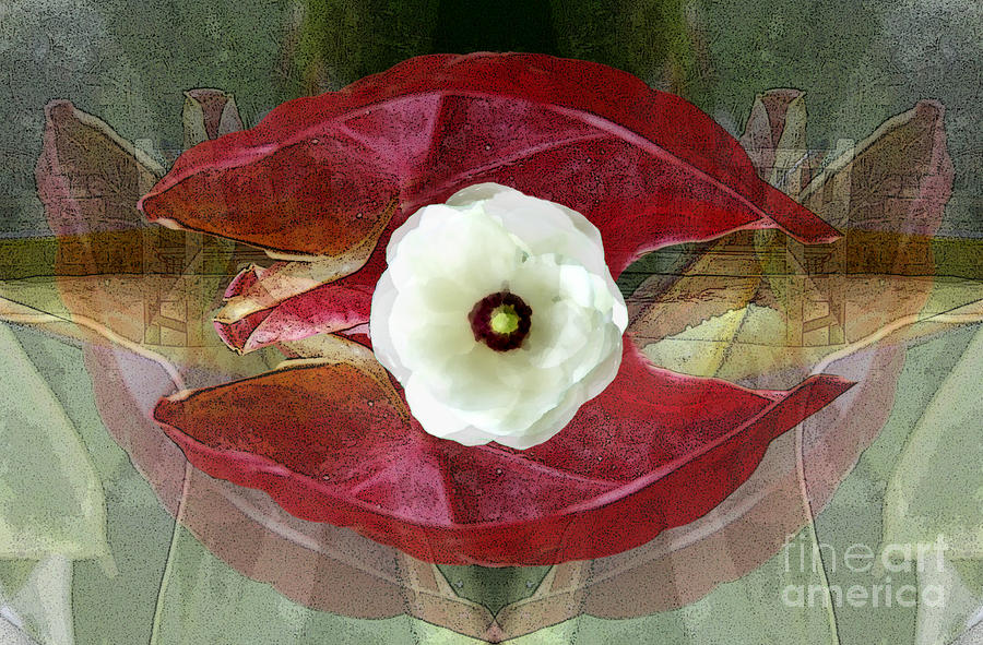 Sanctuary Digital Art  - Sanctuary Fine Art Print