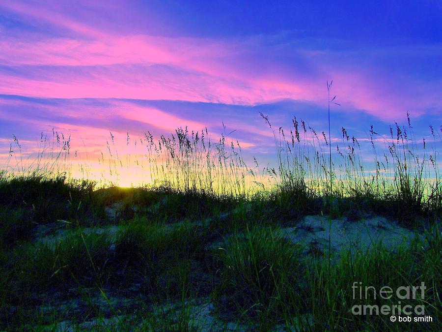Sand dune seagrass and sunset photograph by robert smith for Seagrass for landscaping
