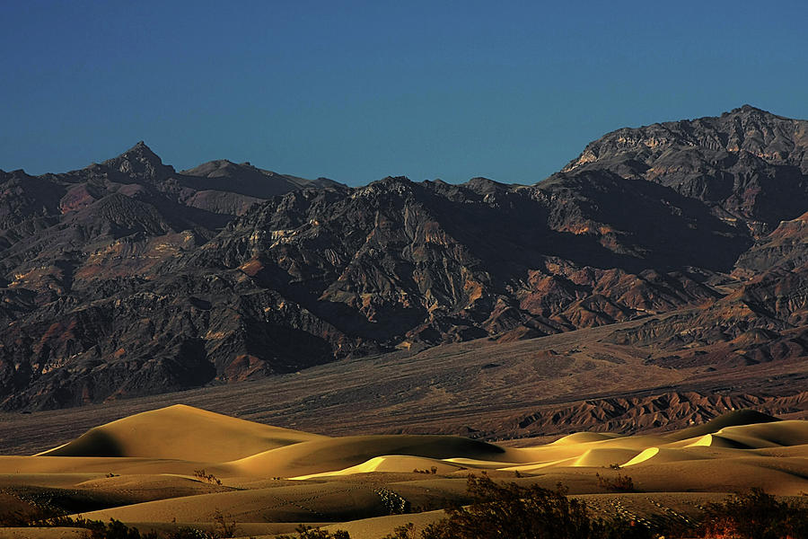 Sand Dunes - Death Valleys Gold Photograph