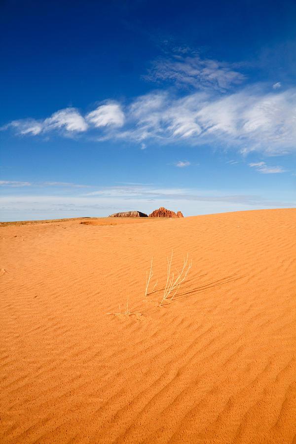 Sand Dunes In San Rafael Desert Pyrography