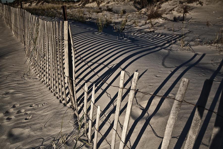 Sand Fence Photograph