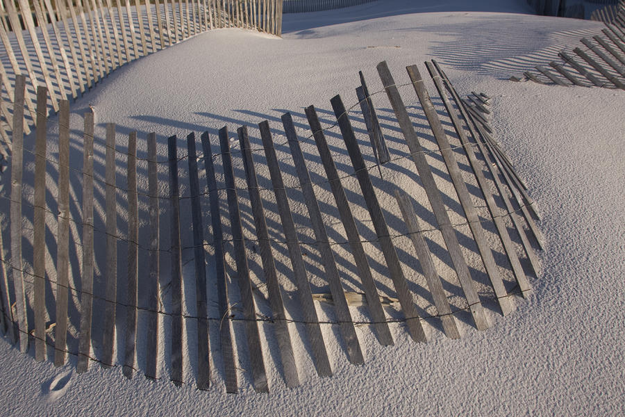 Sand Fence On The Beach In Destin Photograph  - Sand Fence On The Beach In Destin Fine Art Print