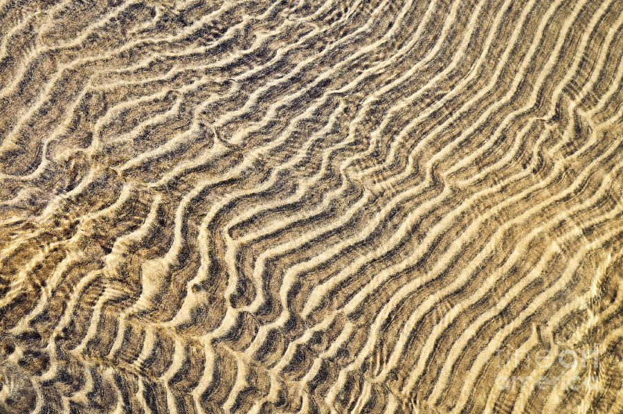 Sand Ripples In Shallow Water Photograph
