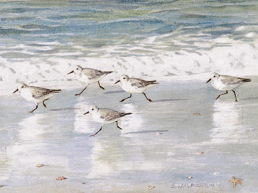 Sandpipers On Siesta Key Painting  - Sandpipers On Siesta Key Fine Art Print