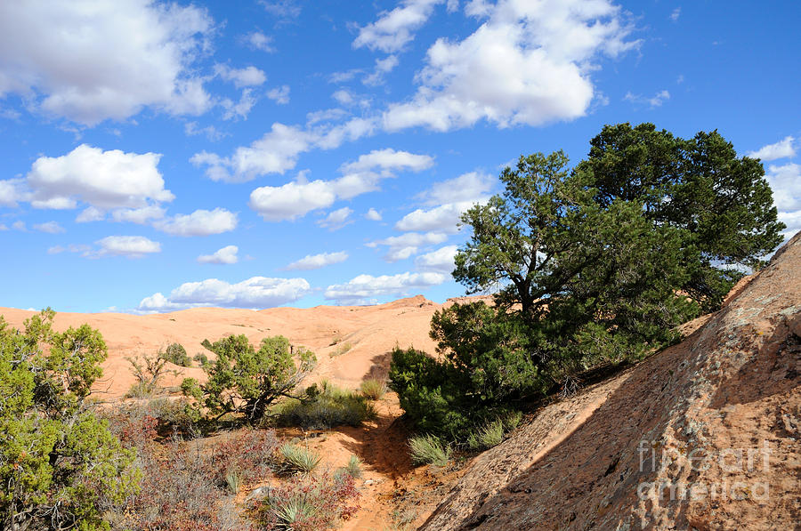 Sandstone Sky Photograph