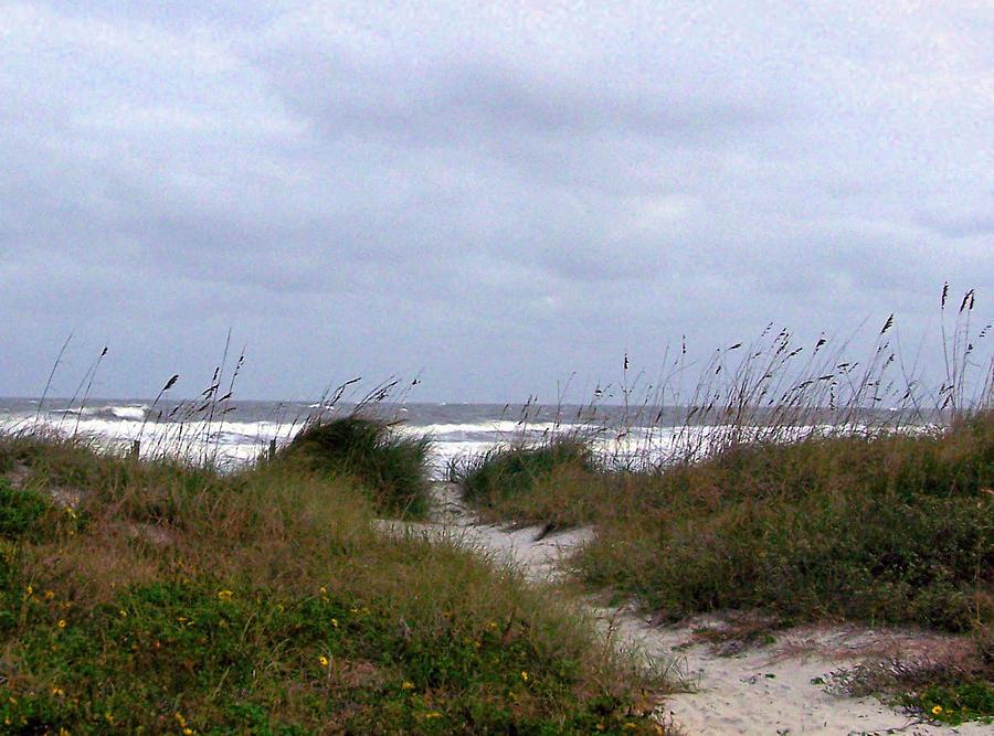 Sandy Path To The Beach Photograph