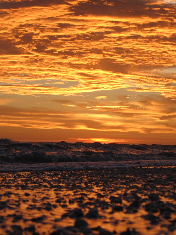 Sanibel Island Photograph
