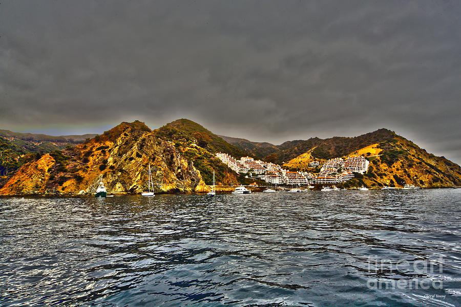 Santa Catalina Island Photograph