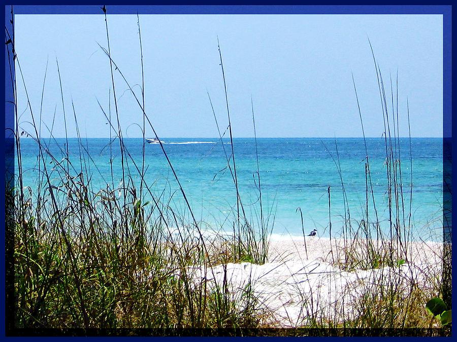 Sarasota Photograph - Sarasota Bay At Longboat Beach by Ginny Schmidt