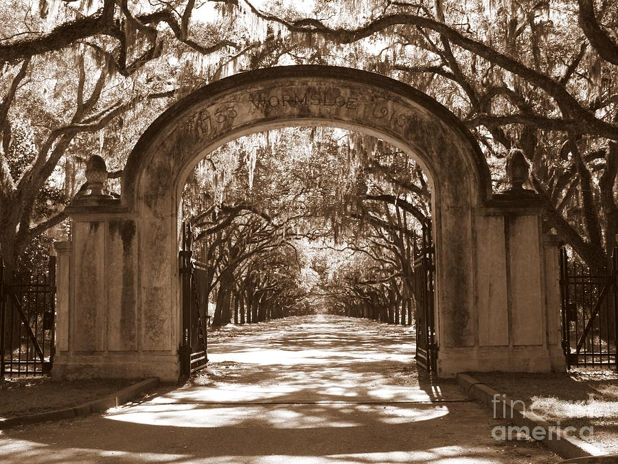 Savannaha Sepia - Wormsloe Plantation Gate Photograph  - Savannaha Sepia - Wormsloe Plantation Gate Fine Art Print