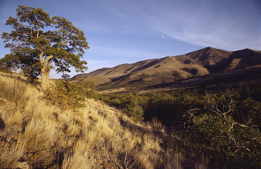 Scenic View Of The Yakima Valley Photograph