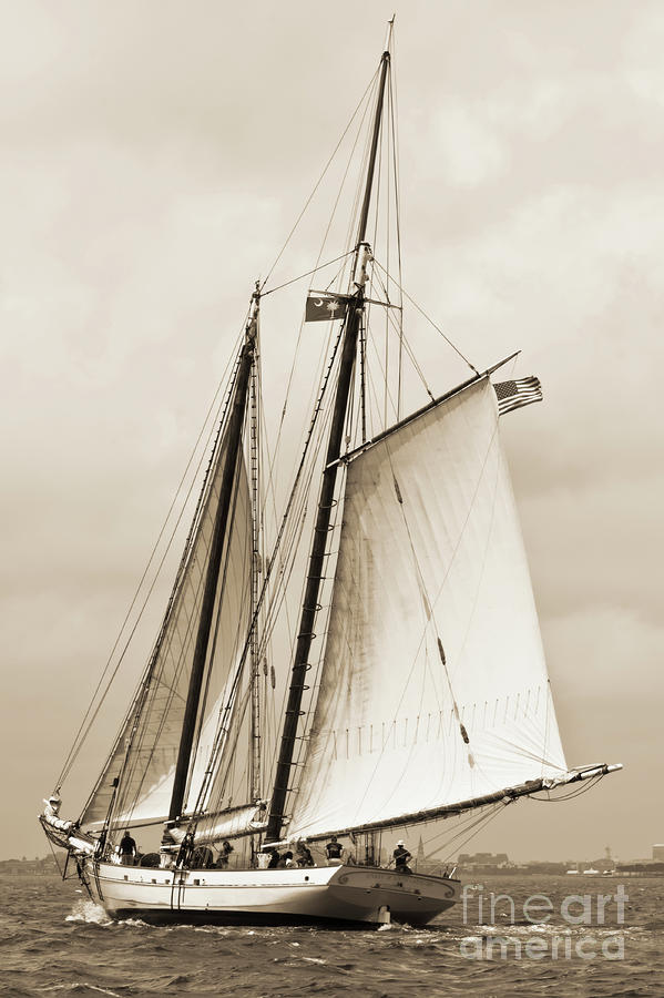 Schooner Sailboat Spirit Of South Carolina Sailing Photograph  - Schooner Sailboat Spirit Of South Carolina Sailing Fine Art Print