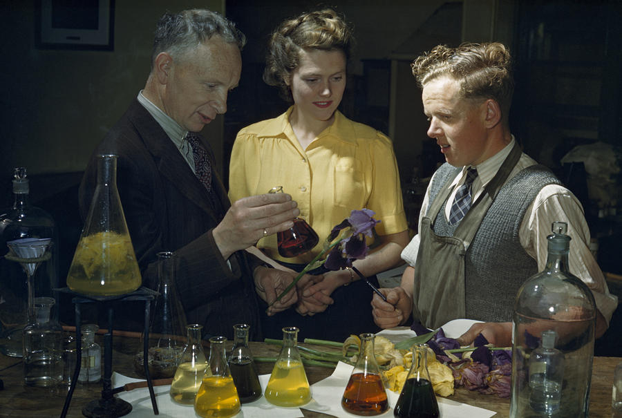 Indoors Photograph - Scientists Examine Results Of Tests by B. Anthony Stewart