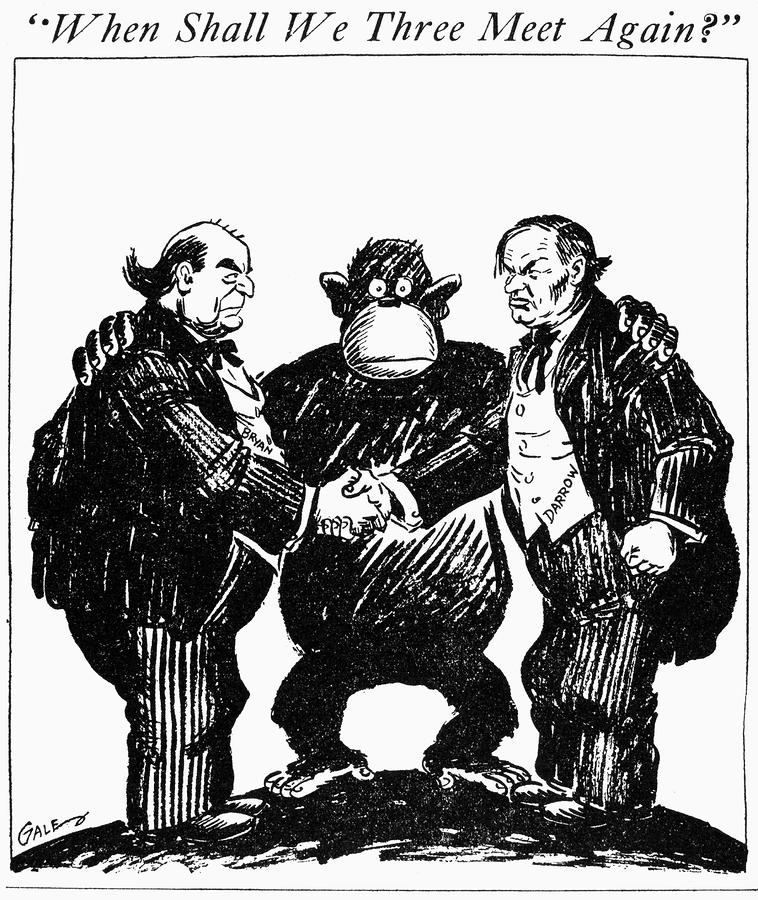 Scopes Trial Cartoon 1925 Drawing