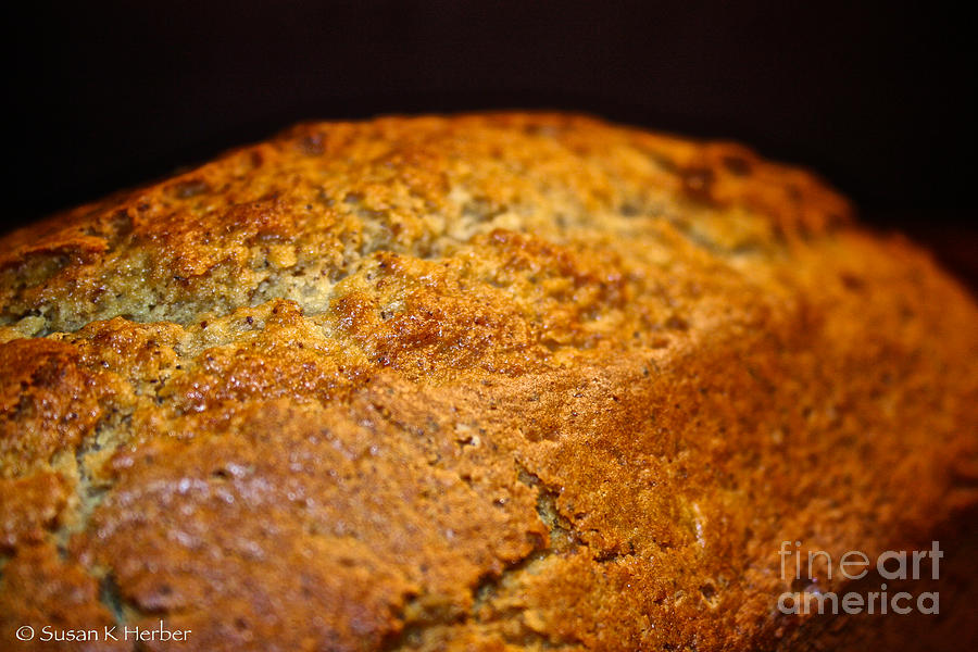 Scratch Built Bread Photograph