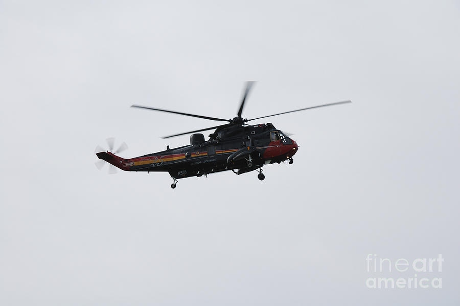Sea King Helicopter Of The Belgian Army Photograph  - Sea King Helicopter Of The Belgian Army Fine Art Print