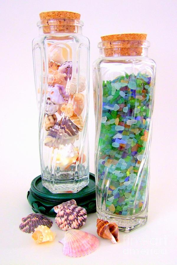 sea-shells-and-beach-glass-mary-deal.jpg